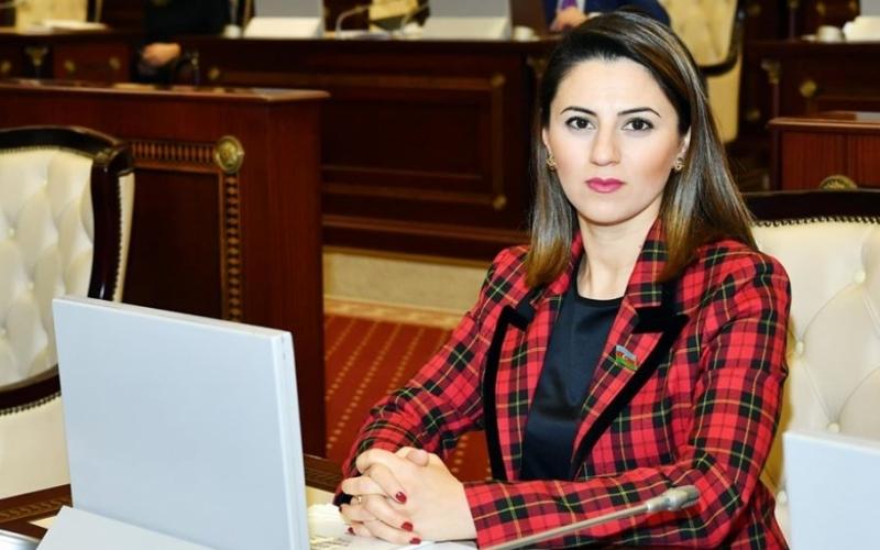 Bu gün regionda sülh və təhlükəsizlik üçün ən böyük təhdid Ermənistanın işğalçılıq siyasətidir