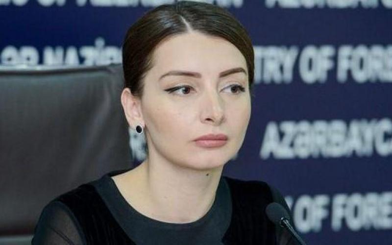 Azərbaycanın beynəlxalq səviyyədə tanınmış sərhədlərini pozan məhz Ermənistandır - Leyla Abdullayeva