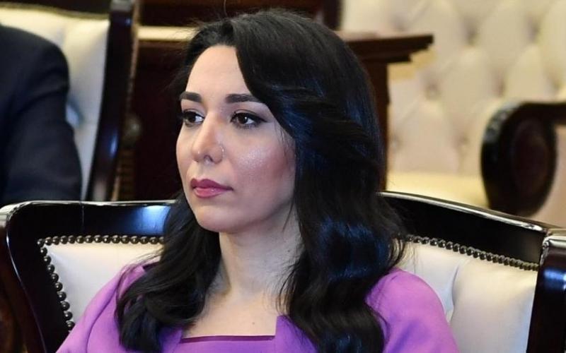 Ermənistanın hərbi-siyasi rəhbərliyi qanun qarşısında cavab verməlidir - Ombudsman