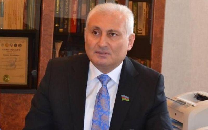 Hikmət Babaoğlu: Diplomatiya milli gücün beyni hesab olunur