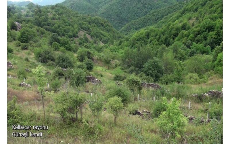Kəlbəcərin Günəşli kəndi - Video