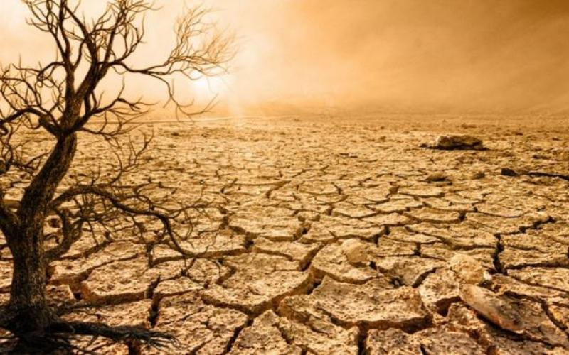 BMT-dən qorxulu iqlim dəyişikliyi xəbərdarlığı