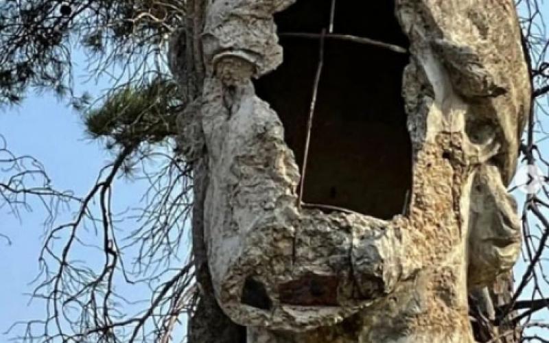 Reza Deqati Nizami Gəncəvinin dağıdılmış büstü barədə paylaşım edib