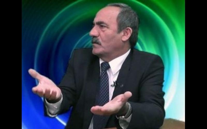 """""""Aprel hadisələri zamanı Azərbaycan diasporasının potensial gücü görsəndi"""""""